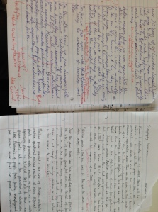 Creates a dialogue between the text and student